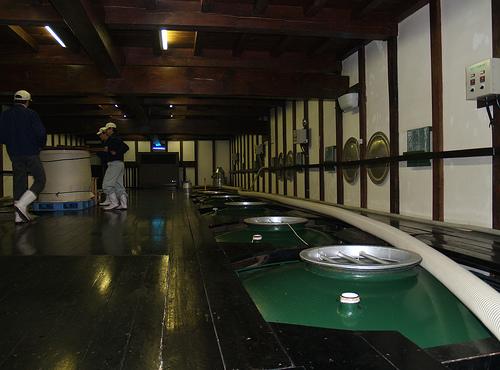 sake fukushima brewery