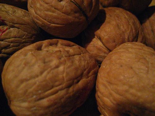 Walnut Rosemary Chicken | Grabbing the Gusto
