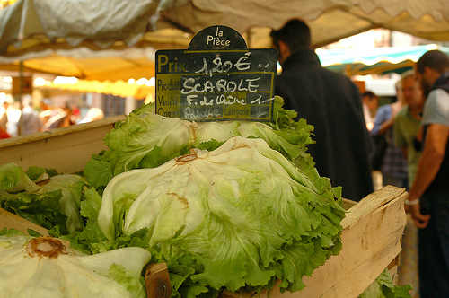Escarole (photo by ilovebutter/Flickr CC license)