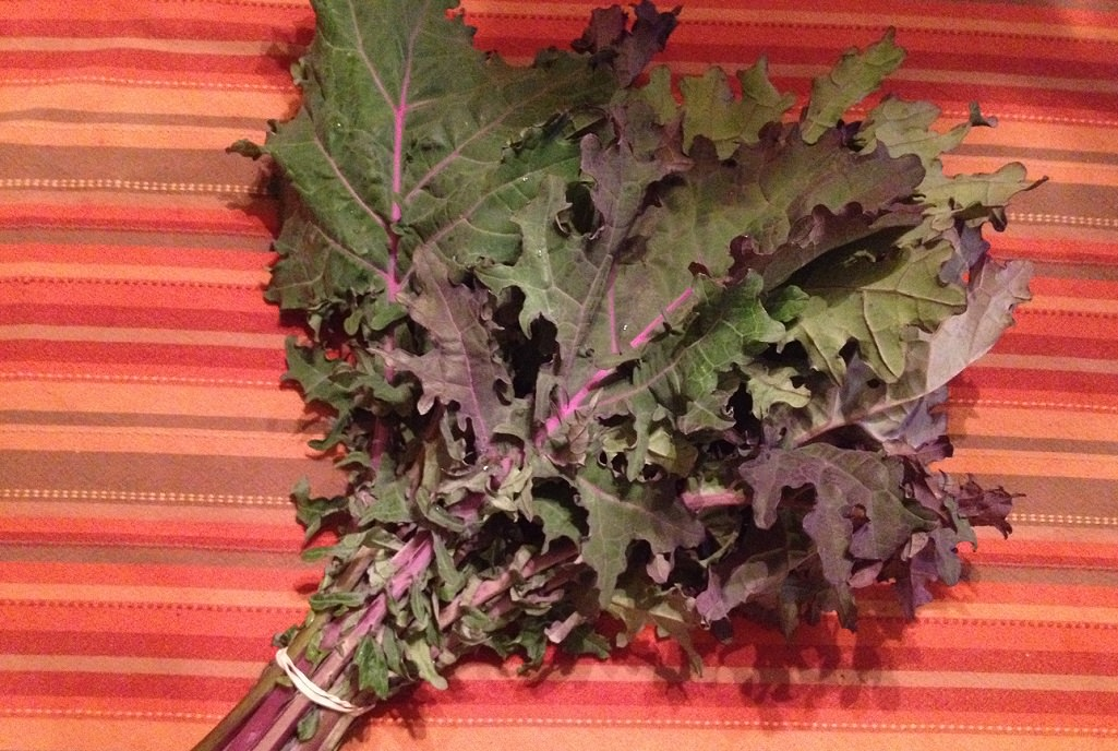 Kale | Grabbing the Gusto