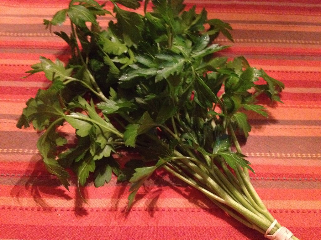Flat-leaf parsley from our CSA share | Grabbing the Gusto