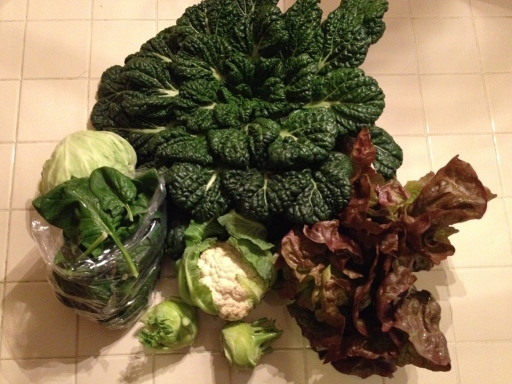 Our CSA Share - tatsoi, kohlrabi, cauliflower, cabbage, spinach, red leaf lettuce | Grabbing the Gusto