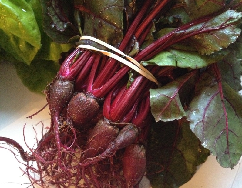 Baby Beets from our CSA share | Grabbing the Gusto