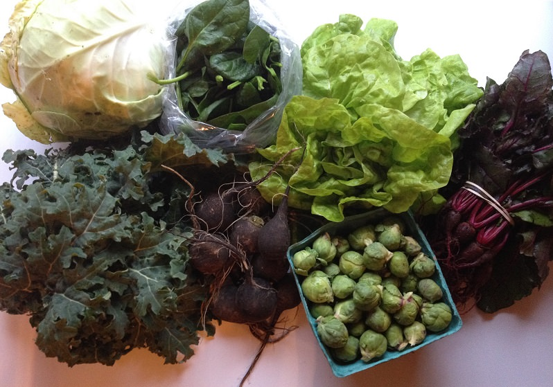Our CSA Share: kale, cabbage, spinach, lettuce, beets, Brussels sprouts, black radishes| Grabbing the Gusto
