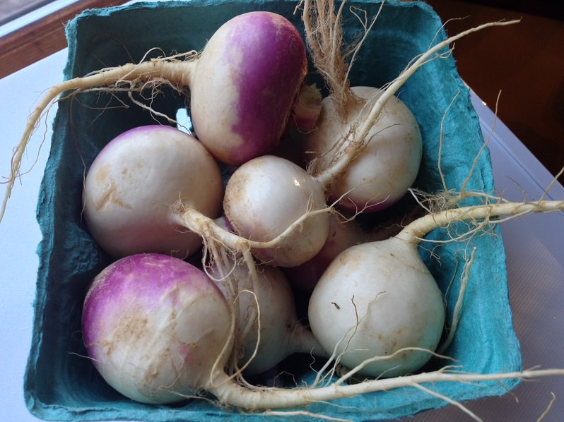 Turnips | Grabbing the Gusto