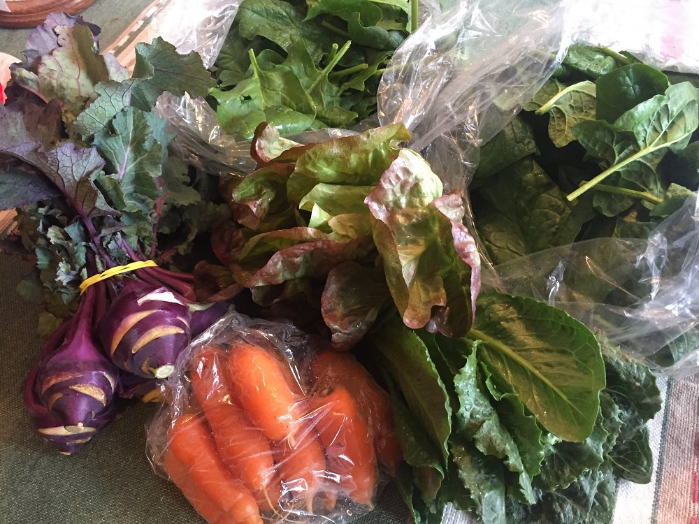 kohlrabi, spinach, lettuces and carrots from the farmers market