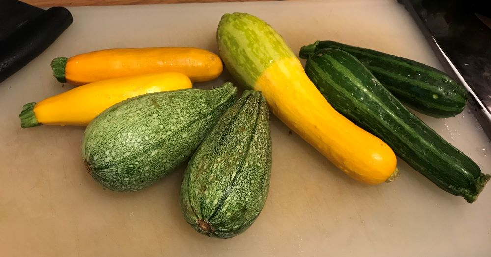 summer squash on board