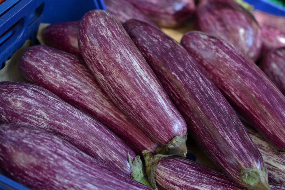 eggplant kirsty-tg-iyEc3PHk2ZM-unsplash